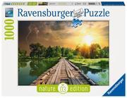 Ravensburger Puzzle - Nature Edition - Mystisches Licht, 1000 Teile