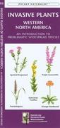 Southwestern Desert Plants: An Introduction to Familiar Species