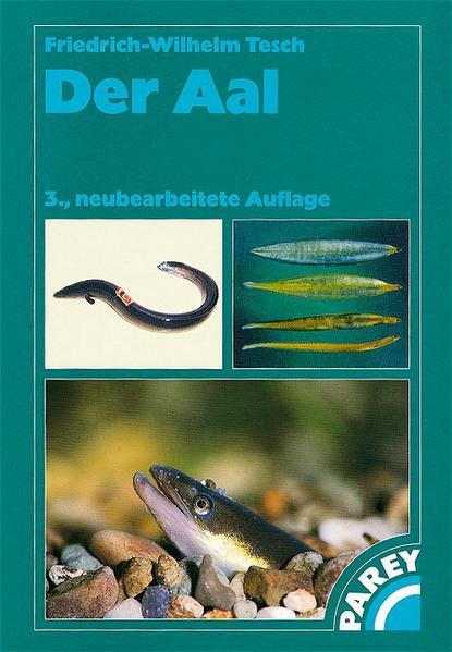 Der Aal als Buch