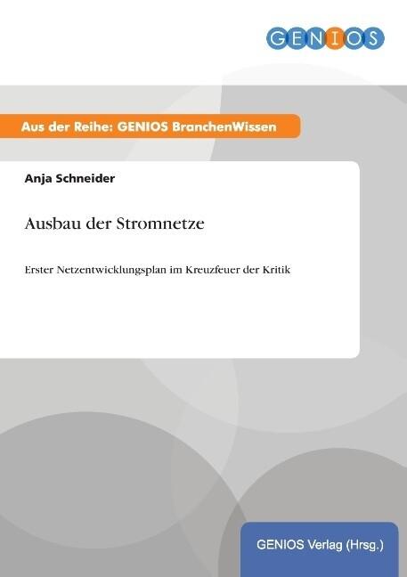 Ausbau der Stromnetze als Buch von Anja Schneider