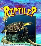 What Is a Reptile?