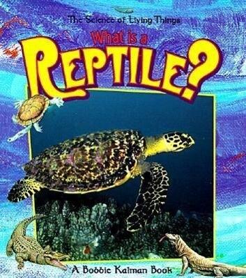 What Is a Reptile? als Taschenbuch