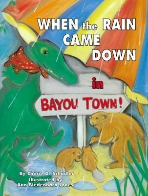 When the Rain Came Down in Bayou Town! als Buch