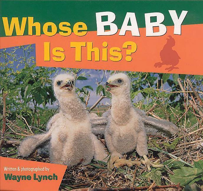 Whose Baby Is This? als Taschenbuch