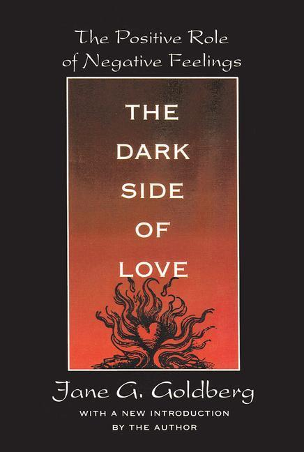 The Dark Side of Love als Taschenbuch