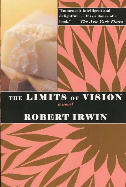 The Limits of Vision als Taschenbuch