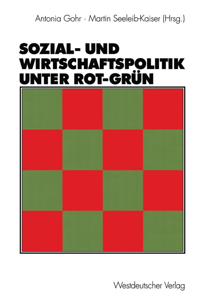 Sozial- und Wirtschaftspolitik unter Rot-Grün als Buch