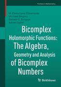 Bicomplex Holomorphic Functions