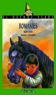 Romaníes als Taschenbuch