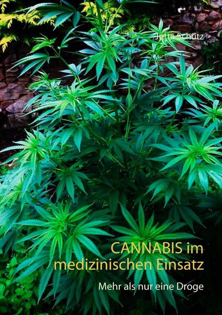 Cannabis im medizinischen Einsatz als eBook Dow...