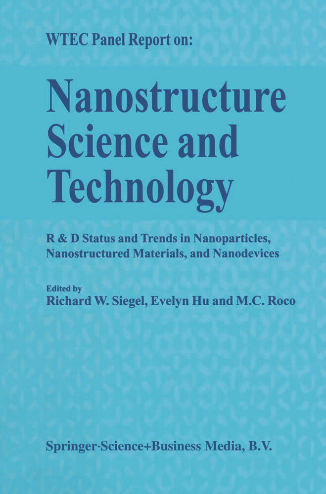 Nanostructure Science and Technology als Buch