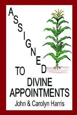 Assigned to Divine Appointments als Taschenbuch