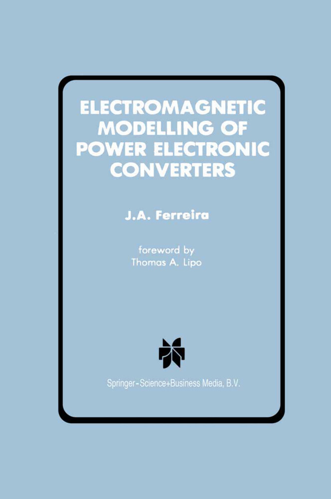 Electromagnetic Modelling of Power Electronic Converters als Buch