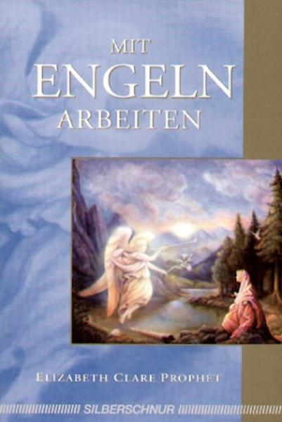 Mit Engeln arbeiten als Buch