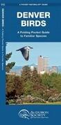 Denver Birds: A Folding Pocket Guide to Familiar Species