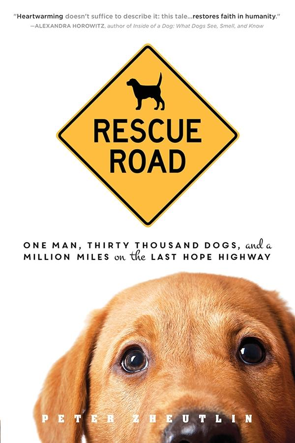 Rescue Road als eBook Download von Peter Zheutlin