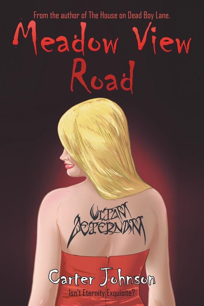 Meadow View Road als Taschenbuch von Carter Joh...