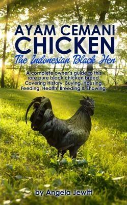 Ayam Cemani Chicken - The Indonesian Black Hen....