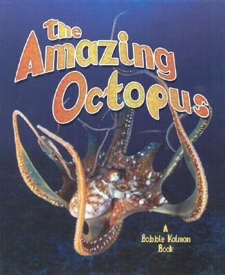 The Amazing Octopus als Buch