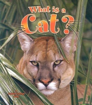 What Is a Cat? als Taschenbuch