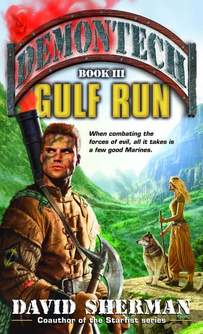 Demontech: Gulf Run als Taschenbuch