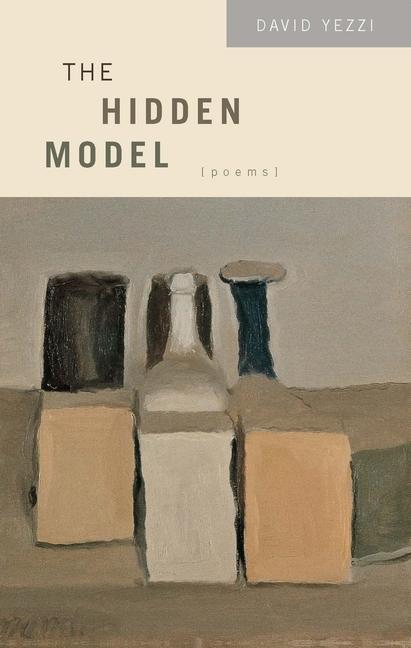 The Hidden Model als Taschenbuch