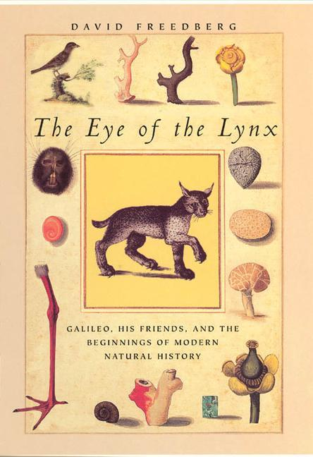 The Eye of the Lynx als Taschenbuch