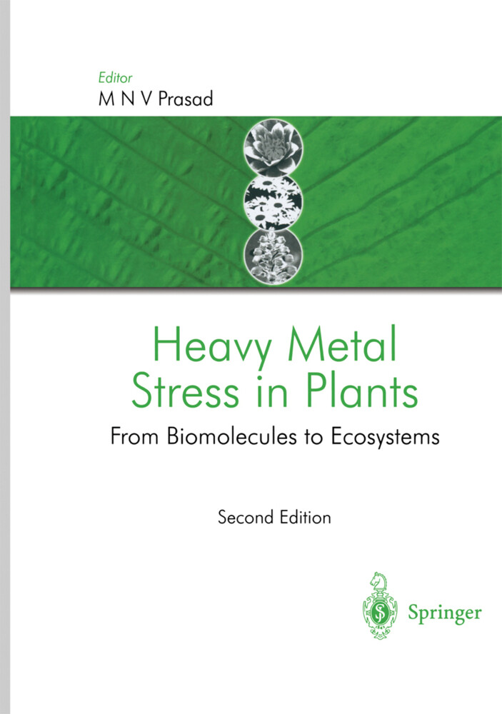 Heavy Metal Stress in Plants als Buch