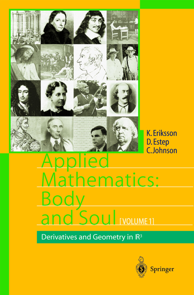 Applied Mathematics: Body and Soul. 3 Bde als Buch
