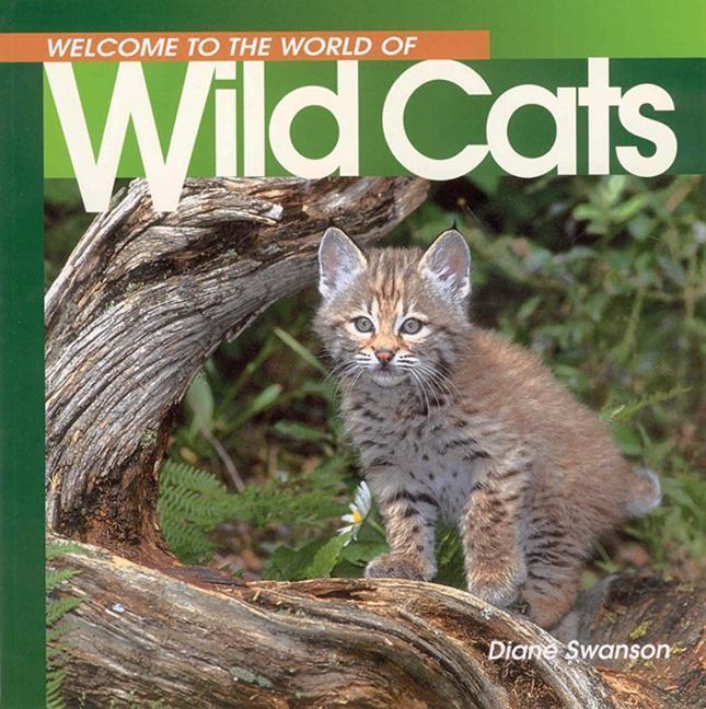 Welcome to the World of Wild Cats als Taschenbuch
