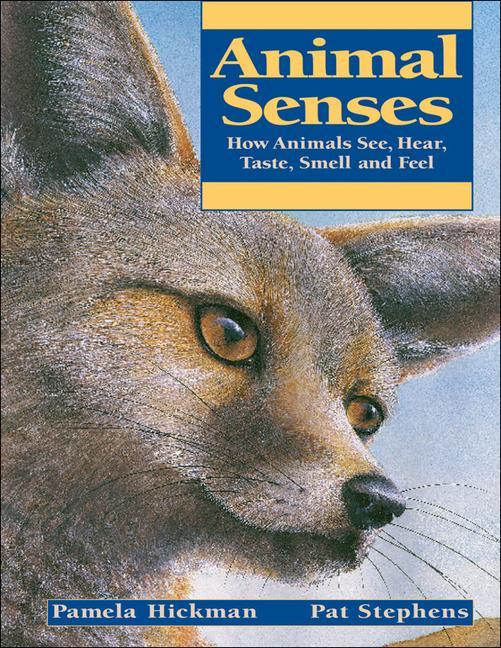 Animal Senses: How Animals See, Hear, Taste, Smell and Feel als Taschenbuch