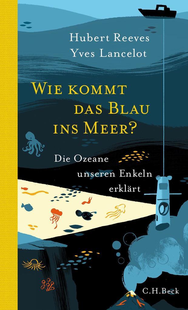 Wie kommt das Blau ins Meer? als Buch