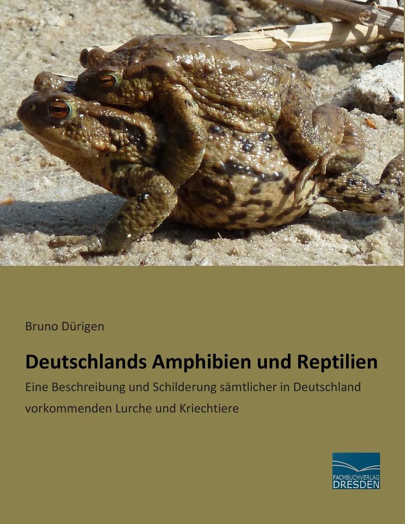 Deutschlands Amphibien und Reptilien als Buch v...