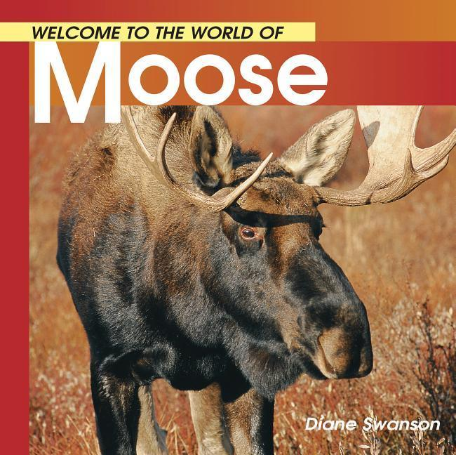 Welcome to the World of Moose als Taschenbuch