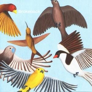 LOOKS AT THE BIRD