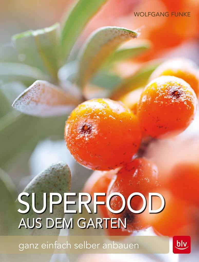 Superfood aus dem Garten als Buch von Wolfgang ...