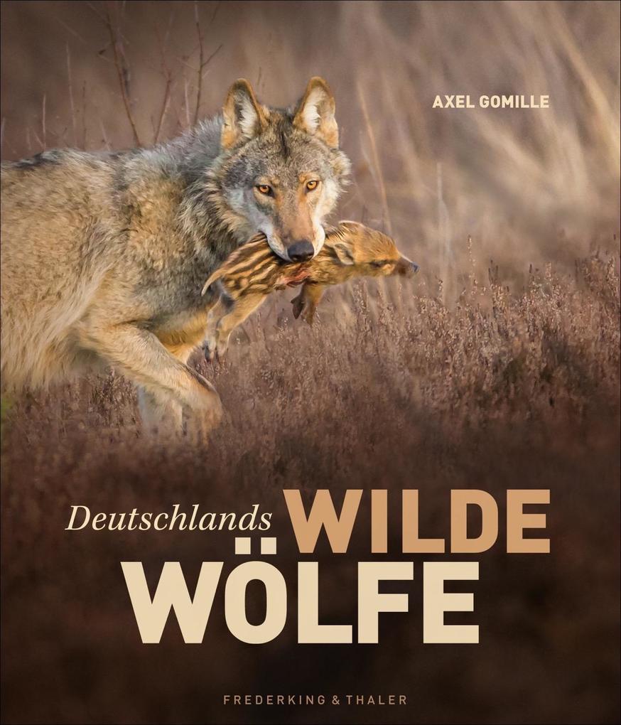 Deutschlands wilde Wölfe als Buch von Axel Gomille