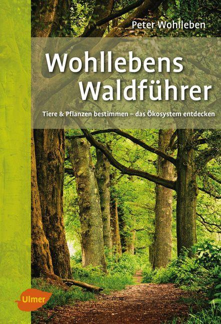 Wohllebens Waldführer als Buch