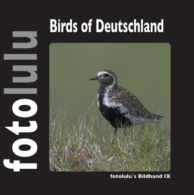 Birds of Deutschland als Buch von fotolulu