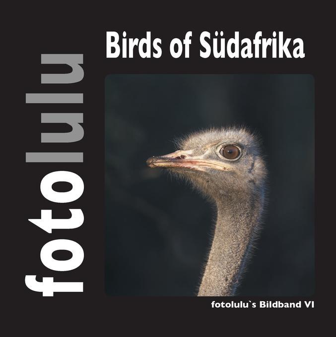 Birds of Südafrika als Buch von fotolulu