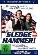 Sledge Hammer, 12 DVDs (Limited Special Edition)