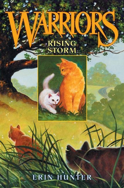 Rising Storm als Buch