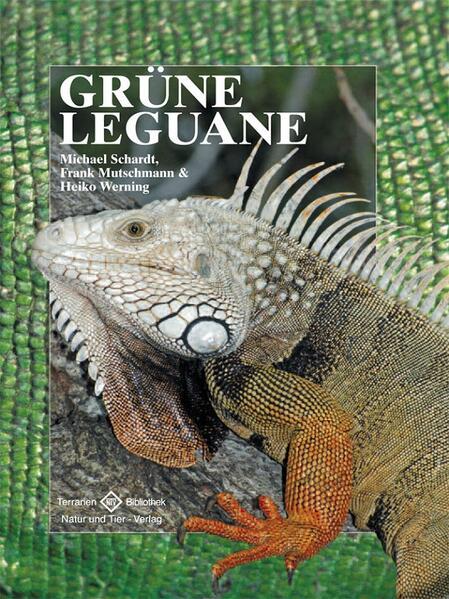 Grüne Leguane als Buch