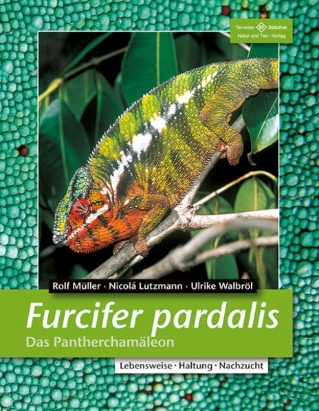 Furcifer pardalis. Das Panterchamäleon als Buch