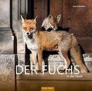 Der Fuchs in der Stadt
