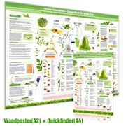 [2er Set] Grüne Smoothies Poster(DINA2) & Grüne Smoothies in 5 Minuten Schnellübersicht(DINA4)
