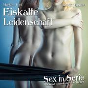 Sex in Serie 02. Eiskalte Leidenschaft