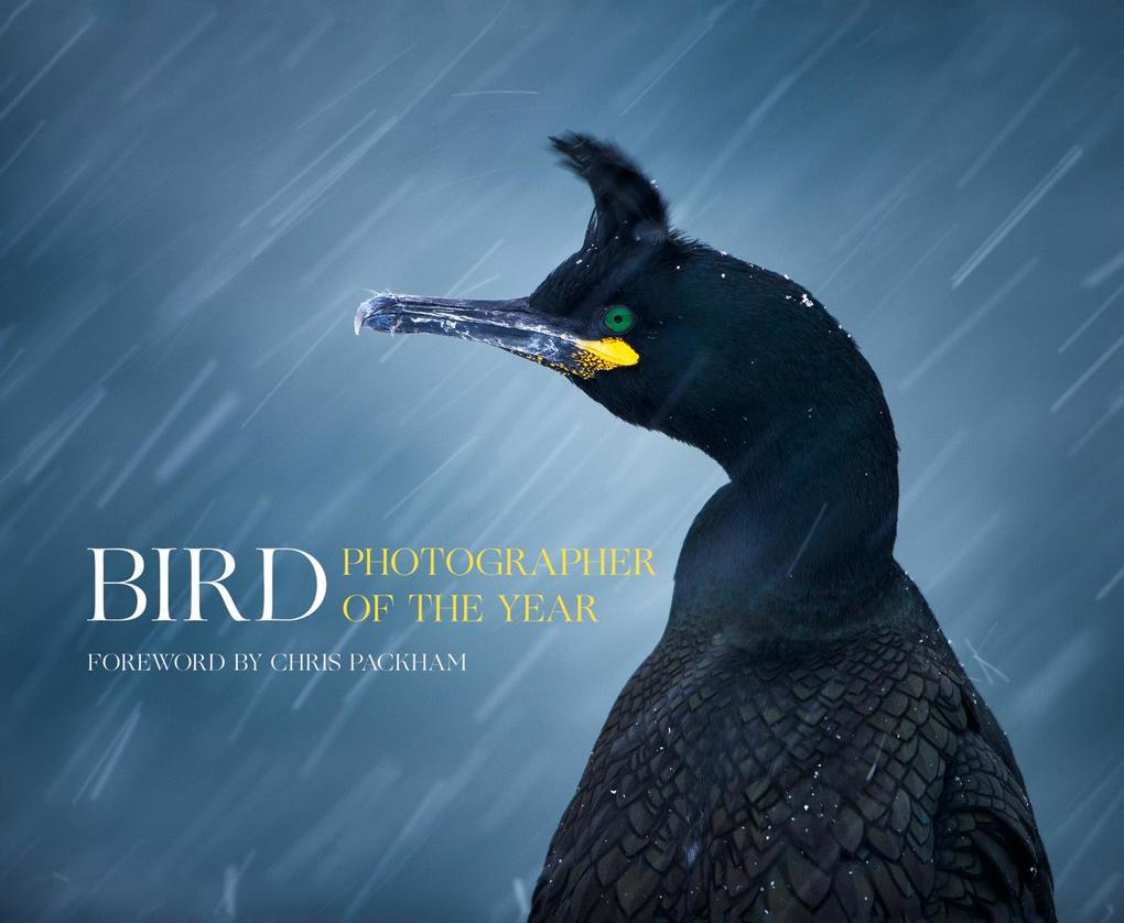 Bird Photographer of the Year als Buch von Bird...