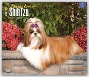 Shih Tzu - For the Love of 2017 - 18-Monatskalender mit freier DogDays-App