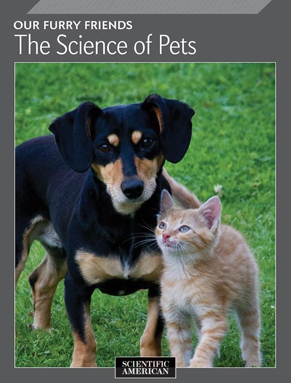 Our Furry Friends als eBook Download von Scient...